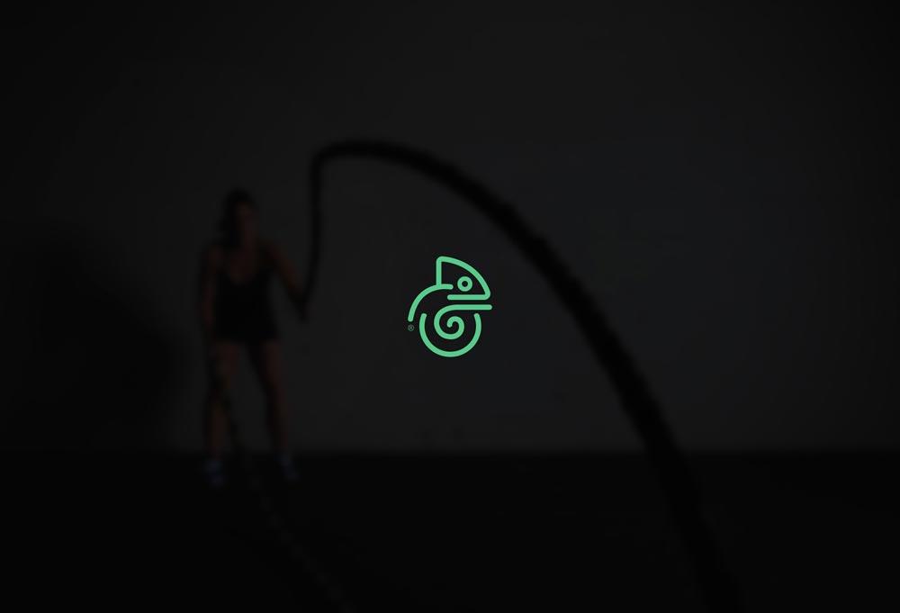 diseño de logotipo camaleon